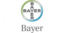 bayer_web_1